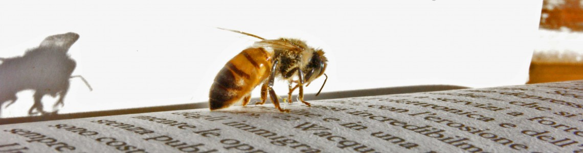 Včelárska literatúra