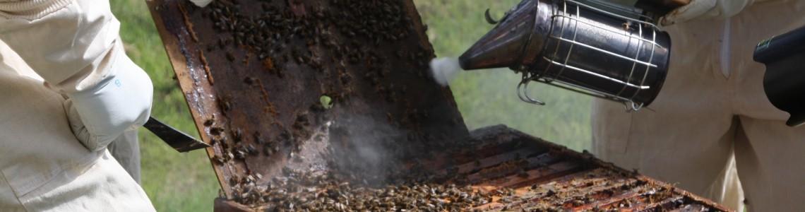 Včelárske pomôcky